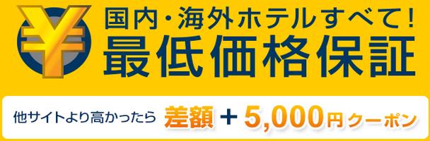 expedia_saite_20131206